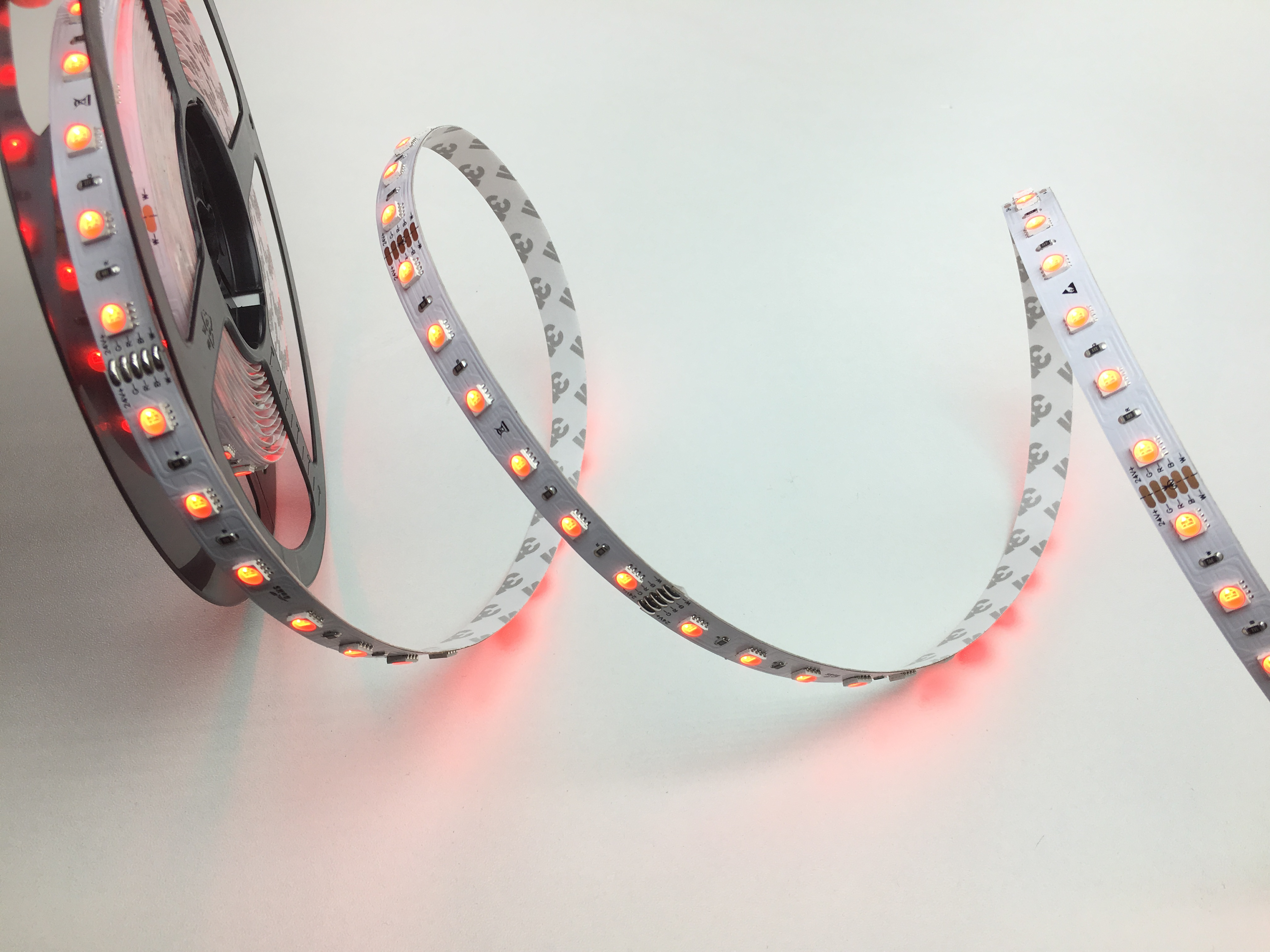 LED STRIPS 10W/M RGB-WW 4-IN-1 24V